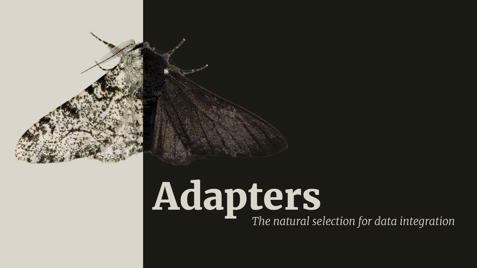 Enstoa Releases Adapters 5.11